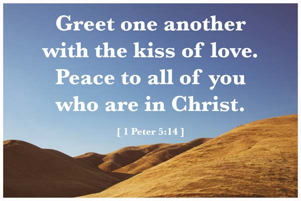 Bible Quotes About Peace Magnificent Bible Verses About Peace  20 Scriptures On Peace